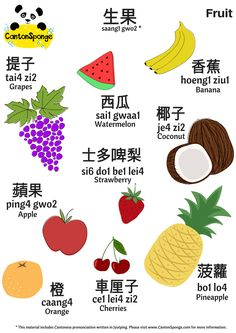 CantonSponge brings Cantonese Language Learning to life via fun activities and resources, including (but not limited to) flashcards, posters and song sheets. Spanish Language Learning, Learn A New Language, Teaching Spanish, Teaching English, Learn Cantonese, Cantonese Songs, Chinese Lessons, French Lessons, Spanish Lessons