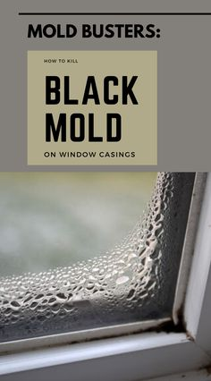 Mold Busters: How To Kill Black Mold On Window Casings Kill Black Mold, Clean Black Mold, Remove Black Mold, Cleaning Mold, Car Cleaning Hacks, House Cleaning Tips, Diy Cleaning Products, Cleaning Recipes, Cleaning Solutions