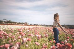 dance like no one is watching, because they're not they're looking at they're phones Carlsbad Flower Fields, Dance Like No One Is Watching, Railroad Tracks, Phones, Flowers, Florals, Telephone, Flower, Bloemen