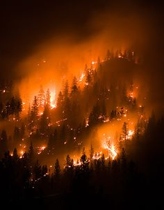 montana wildfire, forest fire by Chris Lombardi