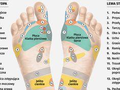 Człowiek w ciągu dnia wykonuje średnio sześć tysięcy kroków. Jak zbudowane są nasze stopy? Co mogą powiedzieć o naszym charakterze i zdrowiu? I jak wykonać leczniczy masaż stóp? Zobaczcie infografikę! A 17, White Out Tape, Self Care, Health, Health Care, Salud