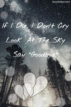 """If I Die I, Don't Cry Look At The Sky Say """"Goodbye."""""""