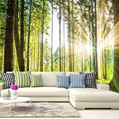 Fabulous murando Fototapete Wald D x cm VLIES TAPETE PREMIUM PROFI QUALIT T Top moderne Wanddeko Riesen Wandbild Top Design Tapete Neue exklusive