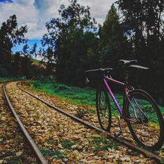 Natural culture. Photo:@xxorrtizz @overr.timee  #colombiaphotography #colombiafixed #colombiaphoto #topcolombiaphoto #bogotaphotography… Railroad Tracks, Culture, Natural, Photography, Instagram, Colombia, Bicycles, Fotografie, Photography Business