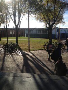 Campus de la Universidad de León. Otoño 2015. Outdoor Furniture, Outdoor Decor, Country Roads, Park, Home Decor, Decoration Home, Room Decor, Parks, Interior Design