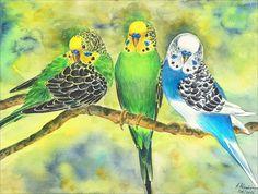 Original Aquarell Bild Vogel Wellensittiche  von Aquarelle_Watercolours auf DaWanda.com