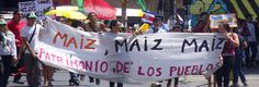 Costa Rica Supreme Court rules 'secretive' GMO approval process unconstitutional. Will the US soon follow?