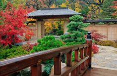 "If you can't get to Japan, visit Anderson Gardens in Rockford, Illinois, home to the ""best Japanese garden outside of Japan. Japanese Garden Style, Portland Japanese Garden, Japanese Landscape, Japanese Gardens, Atlanta Botanical Garden, Botanical Gardens, Sketch Video, Koi, Landscape Design"
