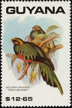 Golden-headed Quetzal stamps - mainly images - gallery format