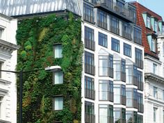 Google Image Result for http://wishfulliving.files.wordpress.com/2009/12/vertical_garden_athenaeum_hotel_london.jpg