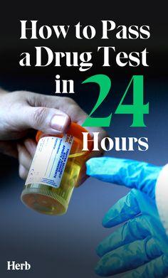 Weed Detox, Thc Detox, Drug Detox, Weed Drug, Cannabis Plant, Test Hacks, Hair Follicle Drug Test, Alcohol, Health
