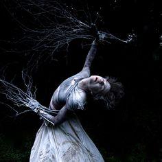 The Woods are Calling by Helen Warner (airgarten), via Flickr