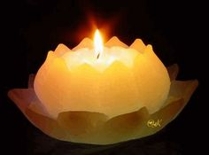 No automatic alt text available. Candle In The Wind, Himalayan Salt Lamp, Gifs, Wiccan, Pumpkin Carving, Birthday Candles, Image Search, Eye Candy, Candle Holders
