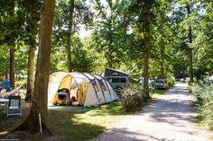 Camping Kawan Village La Grande Tortue - Loire - Cande sur Beuvron (CC)