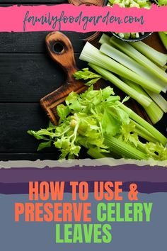 Tossing celery leaves in the bin is no longer necessary, and this guide by Family Food Garden will show you how to use and preserve celery leaves. The leaves are actually quite tasty and flavourful and are an amazing addition to stocks and soups. You can also use celery leaves to enhance the flavor of your gravies. Add it raw to your salads or preserve them for later use. For more ideas and tips, check out our article here. #UseCeleryLeaves #PreserveCeleryLeaves #CeleryLeaves #CeleryLeafRecipes Celery Plant, Healthy Fruits And Vegetables, Preserves, Family Meals, Green Beans, Frozen, Tasty, Herbs, Leaves