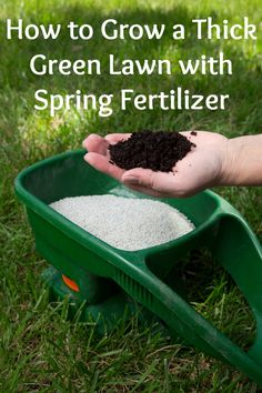 A thick green lawn requires proper care and the right nutrients at the right time during the growing season. Get your lawn off to a great start this spring by watching this video and learning the tips and techniques of spring fertilizing that will ensure a season of lush, green grass.