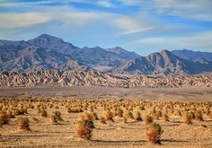 Common landscape photography mistakes and how to fix them-DPS