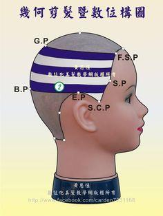 橫髮片劃分(Horizontal parting)在第2設計區的構圖-右側呈現