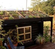 6 Sencillos Pasos para hacer un techo verde - EcoPortal.net
