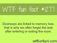fun fact of memory loss  Visit us on goimprovememory.com  Via  google images  #memory #memorys #memorylane #memorybox #memoryfoam #memories #memoryloss #improvememory #memoryday #memoryhelp #memorybook