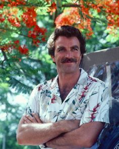 TOM IN THE HAWAIIAN GARDEN, watch Magnum and loved it, because it reminded me of younger days