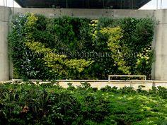Jardín vertical en el Edificio Inteligente EPM en Medellín, Colombia