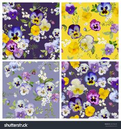 Pansy Flowers Background Set- Seamless Floral Shabby Chic Patterns - In Vector - 360708248 : Shutterstock