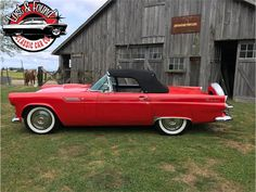 1956 Ford Thunderbird Ford Thunderbird, Car Ford, Vintage Cars, Birds, Trucks, Memories, American, Classic, Vehicles