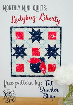 Ladybug Liberty - mini quilt Mini Quilt Patterns, Sewing Patterns Free, Free Pattern, Free Sewing, Fabric Strips, Fabric Squares, Quilting Templates, Quilting Projects, Quilt Tutorials