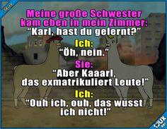 Alles ist besser als lernen ^^'  Lustige Memes und Sprüche #Humor #LamasmitHüten #Sprüche #lustigeMemes #Jodel #lustigeBilder #lustig #funny