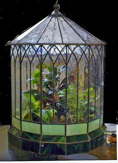 Large Wardian Case cool DIY with stained glass :)! Love this Elegant Terrarium! Aquarium Terrarium, Terrarium Plants, Glass Terrarium, Terrarium Closed, Stained Glass Projects, Stained Glass Patterns, Air Plants, Indoor Plants, Indoor Gardening