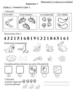 Numbers Preschool, Math Numbers, Preschool Classroom, Preschool Worksheets, Kindergarten Math, Youth Activities, Paper Trail, Free Math, Kids Education