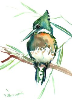 Green Kingfisher original watercolor painting 12 X by ORIGINALONLY, $30.00