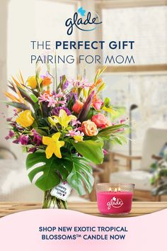 Pair a bunch of flowers with our NEW Glade® Exotic Tropical Blossoms™ candle for the perfect Mother's Day gift. It's a great way to show mom you care. Happy Mom, Happy Mothers Day, Exotic Flowers, Beautiful Flowers, Happy Birthday Black, 3 Wick Candles, Perfect Mother's Day Gift, Mini Things, Bunch Of Flowers