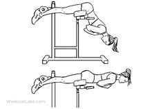 Back Extensions / Hyperextensions