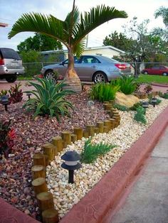 no maintenance landscaping florida - Google Search