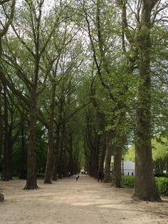 Elizabeth Park, Brussels, By Kate
