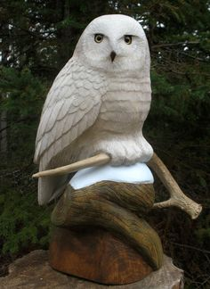 Wildlife in Wood - By appointment. Hand-carved owls, eagles, hawks, and other birds of northern Wisconsin. The original carvings I create are carved lifesize from a single block of wood or natural log. Look for one of my Great Horned Owl carvings the next Great Horned Owl, Art Carved, Fine Woodworking, Woodworking Crafts, Snowy Owl, Wood Creations, Driftwood Art, Owl Art, Scroll Saw