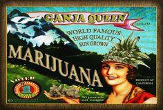 #w33daddict #Alcool #MaryJane #Marijuana #Drugs #Dope #Hemp #Vintage #Humboldt #California #Cannabis #Pot