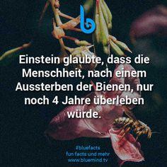 Fact-898.jpg (612×612)