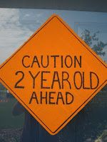 Because I Said So (and Other Mommyisms): Caution: 2 Year Old Ahead!