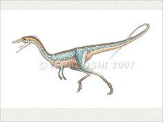 Compsognathus