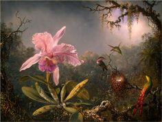 Cattleya Orchid and Three Hummingbirds - Martin Johnson Heade