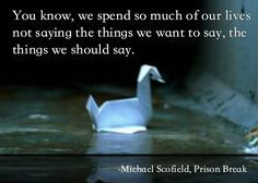 """""""You know, we spend so much of our lives not saying the things we want to say, the things we should say."""" -Michael Scofield, Prison Break"""