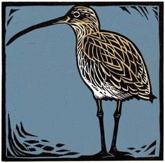 Curlew On Shore Print