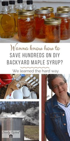 If DIY maple syrup is on your bucket list, then I've put this post together specificallyfor you. If you find the subject intriguing but aren't up for long hours of daily sap gathering and late-night boiling, or don't live where the climate is conducive to making maple syrup, then you might want to just read …