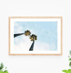 Palm Tree Printable Wall Art Beach Sky Instant Download downloadable Printable Wall Art downloadable palm trees palms clouds blue sky photo photography beach beach house sea ocean nautical travel photography printables digital file artwork by Sail and Swan