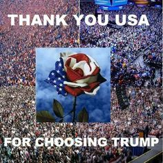 I am most certainly not a Trump supporter. But the last person I wanted in office was Clinton, so I'm grateful it was Trump and not her. Donald Trump, Trump Is My President, Vote Trump, Pro Trump, Trump Train, Trump Pence, God Bless America, First Nations, We The People