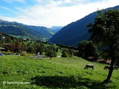 Part of the Prättigau Valley in Graubünden, seen from the village of Fanas