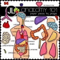 jlarsen_anatomy101-ep_LRG